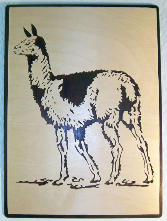 WB 011 Lama