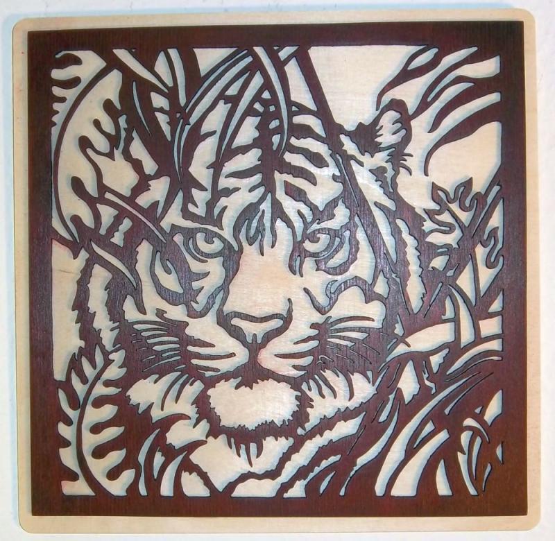 WB 024 Tigerkopf im Busch