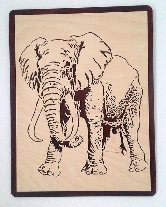 WB 055 Elefant