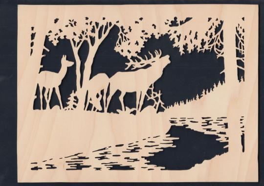 FBA 134 Hirsche am Waldsee