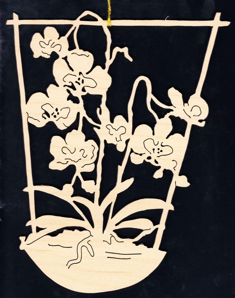 FBA 155 Orchideen